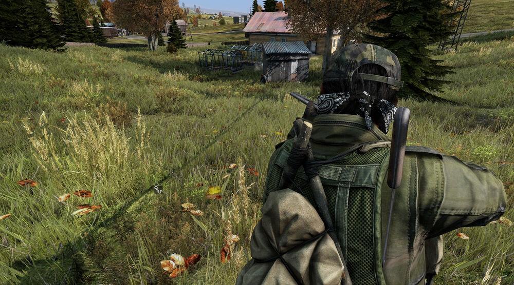 Game image DayZ